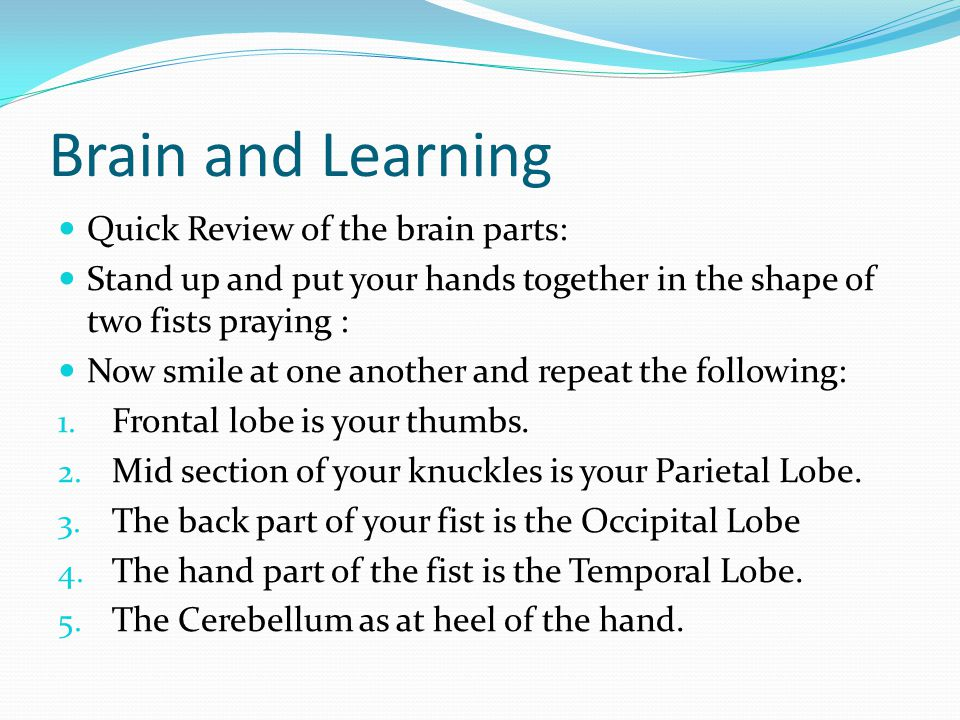 Brain and Learning Quick Review of the brain parts: Stand up and put your hands together in the shape of two fists praying : Now smile at one another