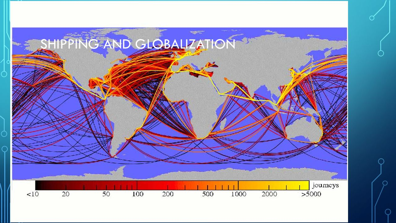 SHIPPING AND GLOBALIZATION