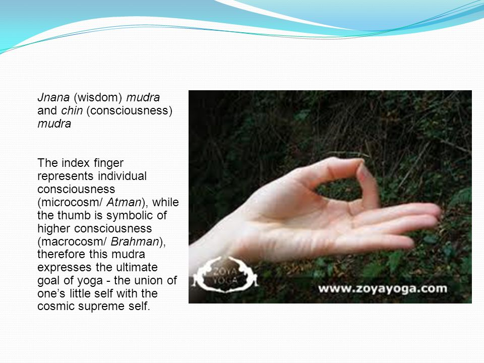 Jnana (wisdom) mudra and chin (consciousness) mudra The index finger represents individual consciousness (microcosm/ Atman), while the thumb is symbol