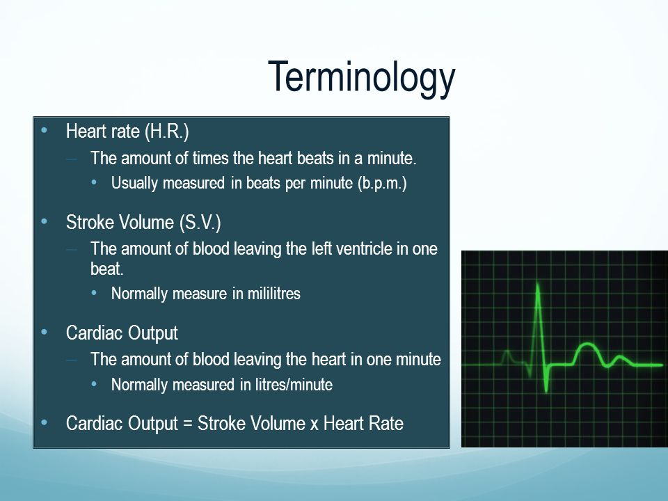 Terminology Heart rate (H.R.) – The amount of times the heart beats in a minute. Usually measured in beats per minute (b.p.m.) Stroke Volume (S.V.) –