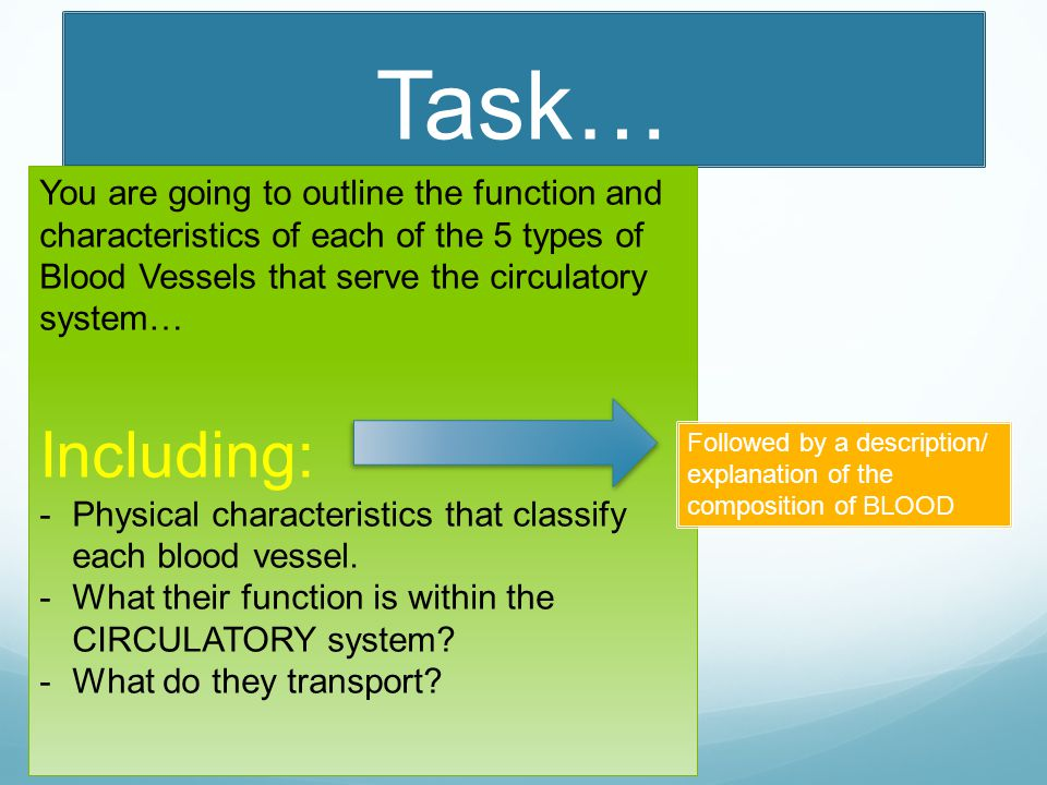 Task… You are going to outline the function and characteristics of each of the 5 types of Blood Vessels that serve the circulatory system… Including: