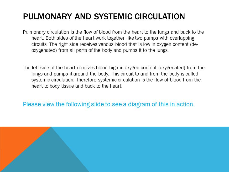 PULMONARY AND SYSTEMIC CIRCULATION Pulmonary circulation is the flow of blood from the heart to the lungs and back to the heart.