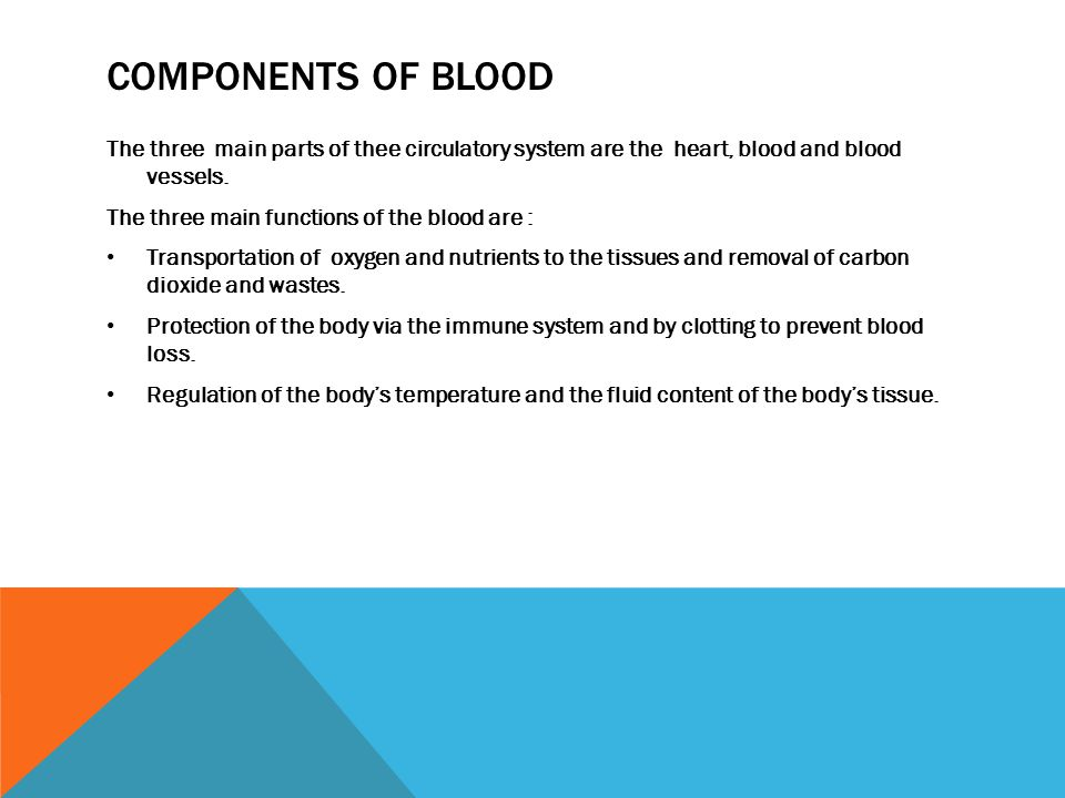 COMPONENTS OF BLOOD The three main parts of thee circulatory system are the heart, blood and blood vessels. The three main functions of the blood are