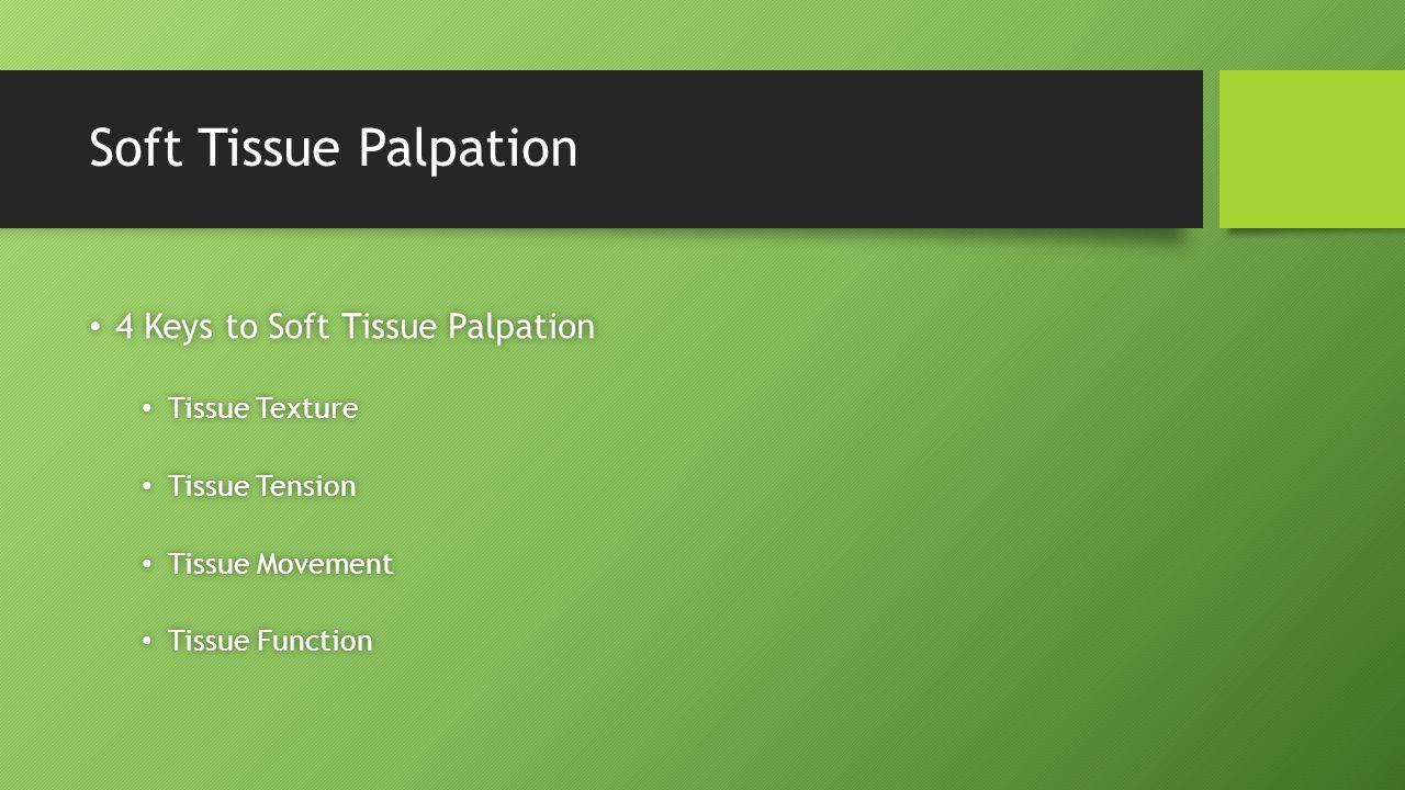 Soft Tissue Palpation 4 Keys to Soft Tissue Palpation 4 Keys to Soft Tissue Palpation Tissue Texture Tissue Texture Tissue Tension Tissue Tension Tissue Movement Tissue Movement Tissue Function Tissue Function