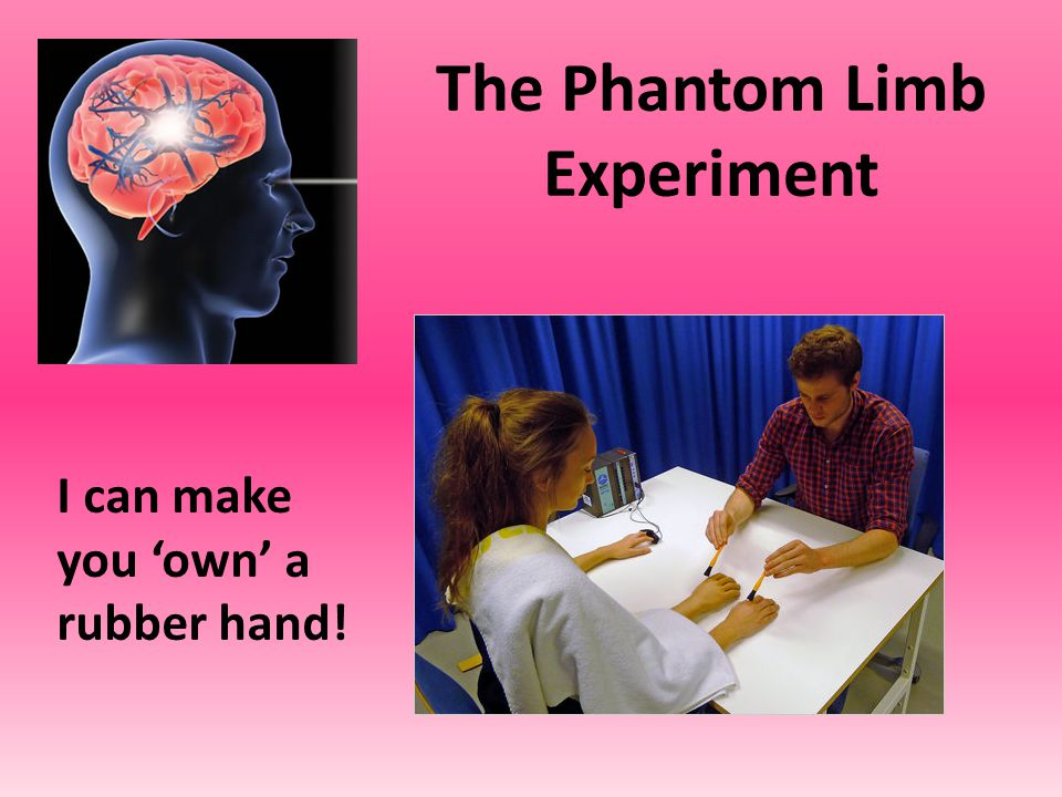 I need a willing volunteer to try out the Rubber Hand Experiment! Or, go to the next slide.