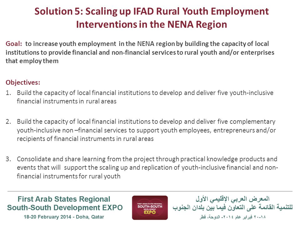 Solution 5: Scaling up IFAD Rural Youth Employment Interventions in the NENA Region Goal: to increase youth employment in the NENA region by building