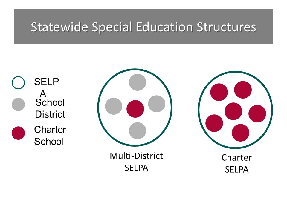 Statewide Special Education Structures School District Charter School SELP A Charter SELPA Multi-District SELPA