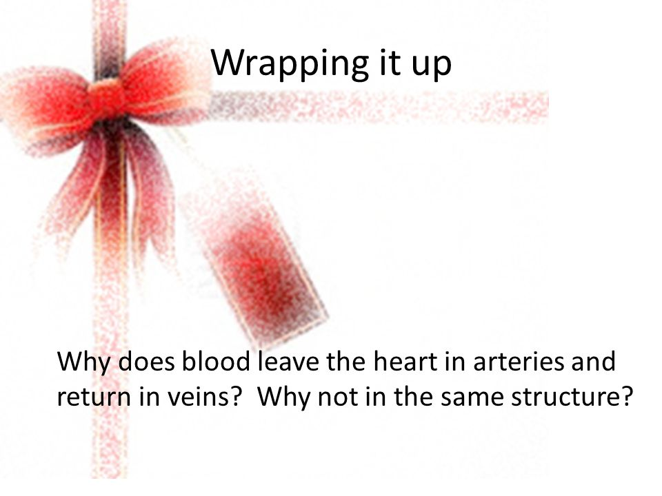 Wrapping it up Why does blood leave the heart in arteries and return in veins? Why not in the same structure?