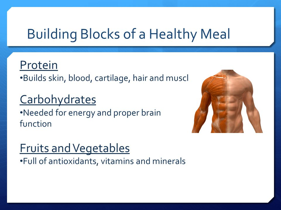 Building Blocks of a Healthy Meal Protein Builds skin, blood, cartilage, hair and muscle Carbohydrates Needed for energy and proper brain function Fru