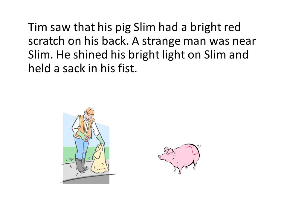 Tim saw that his pig Slim had a bright red scratch on his back. A strange man was near Slim. He shined his bright light on Slim and held a sack in his