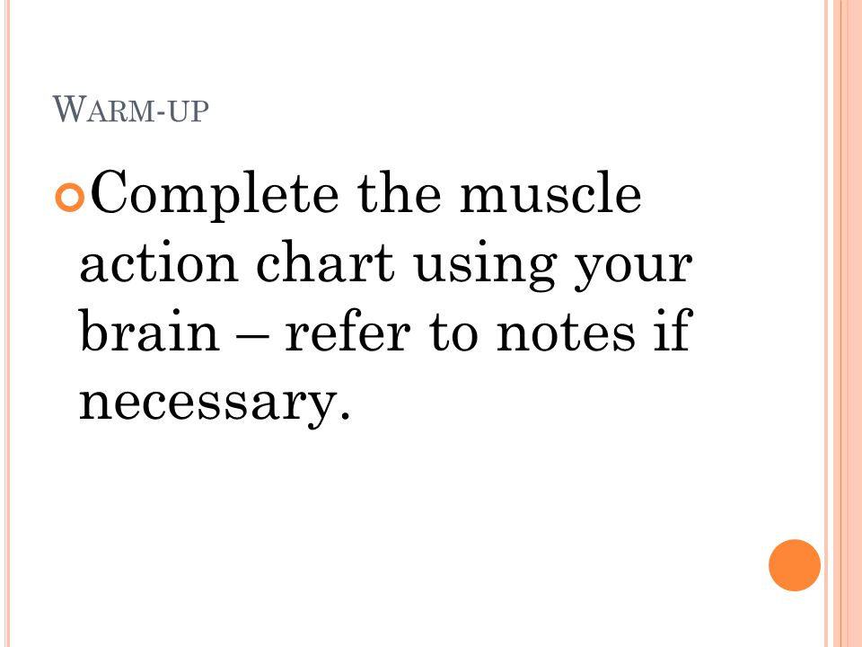 W ARM - UP Complete the muscle action chart using your brain – refer to notes if necessary.