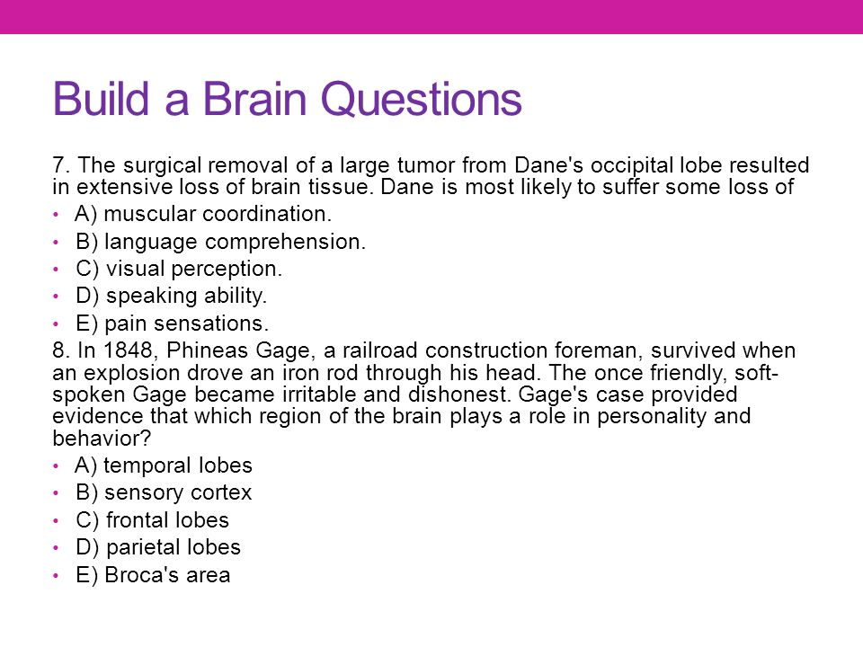 Build a Brain Questions 7. The surgical removal of a large tumor from Dane's occipital lobe resulted in extensive loss of brain tissue. Dane is most l