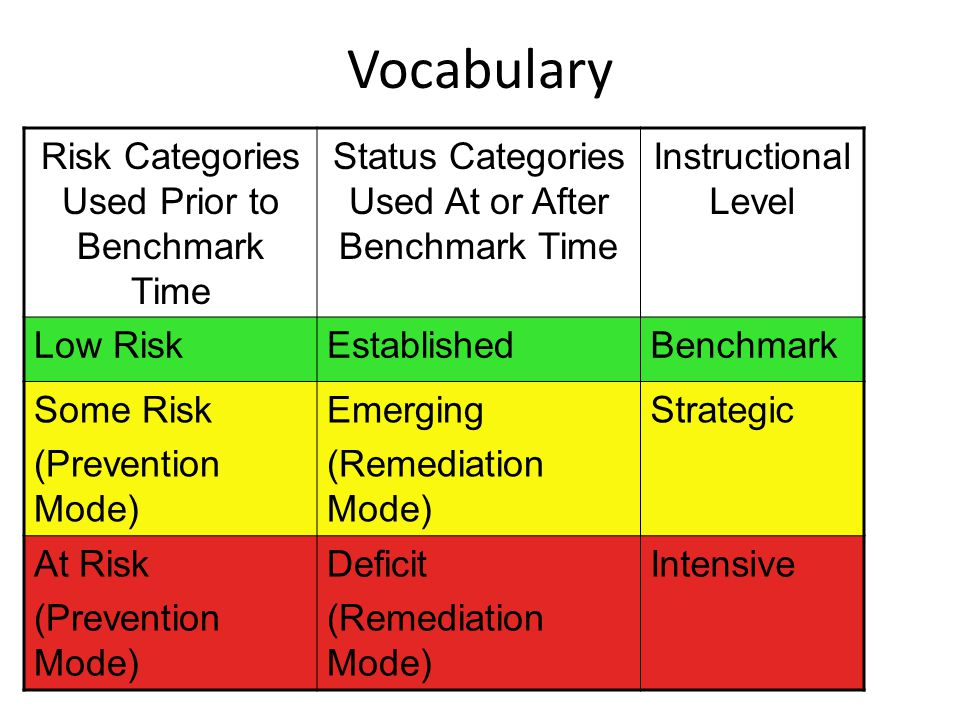 Vocabulary Risk Categories Used Prior to Benchmark Time Status Categories Used At or After Benchmark Time Instructional Level Low RiskEstablishedBench