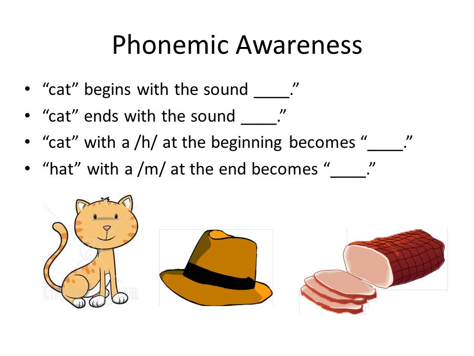 """Phonemic Awareness """"cat"""" begins with the sound ____."""" """"cat"""" ends with the sound ____."""" """"cat"""" with a /h/ at the beginning becomes """"____."""" """"hat"""" with a"""
