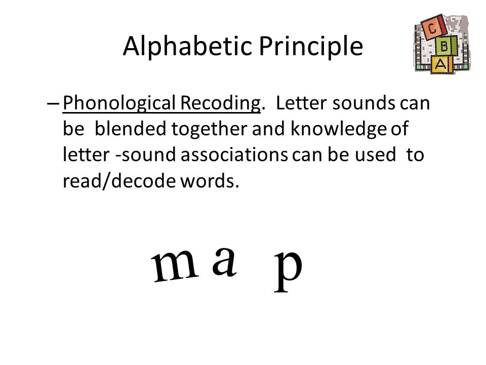 Alphabetic Principle – Phonological Recoding. Letter sounds can be blended together and knowledge of letter -sound associations can be used to read/de