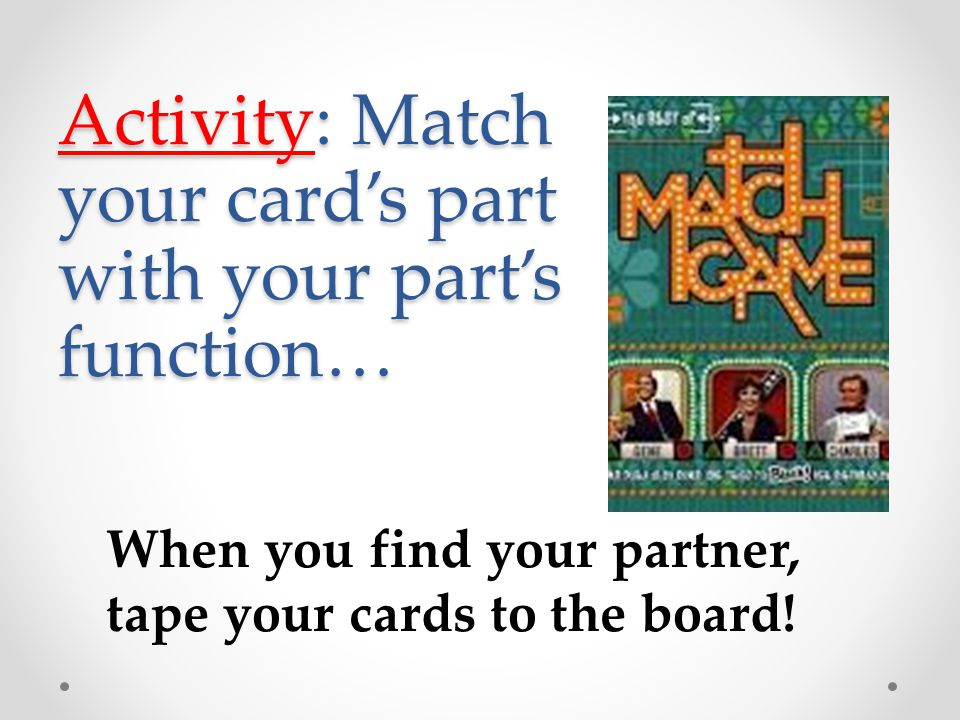 Activity: Match your card's part with your part's function… When you find your partner, tape your cards to the board!