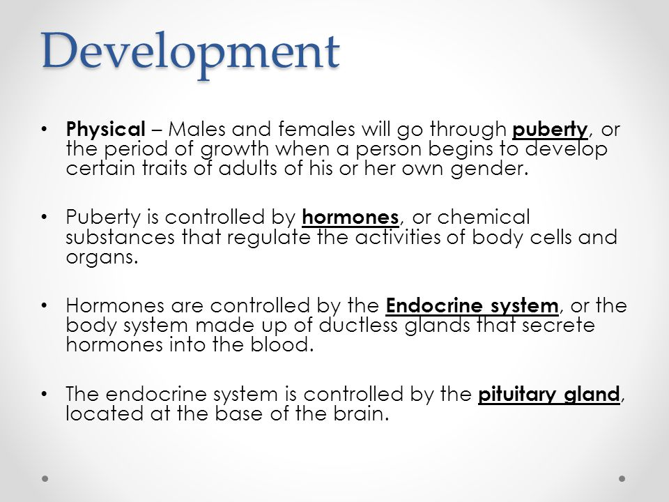 Puberty Males – The pituitary gland controls the amount of testosterone produced by the testes.