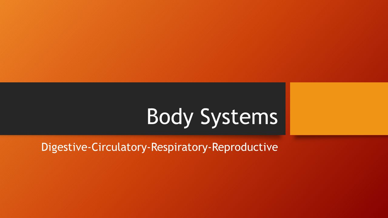 Body Systems Digestive-Circulatory-Respiratory-Reproductive