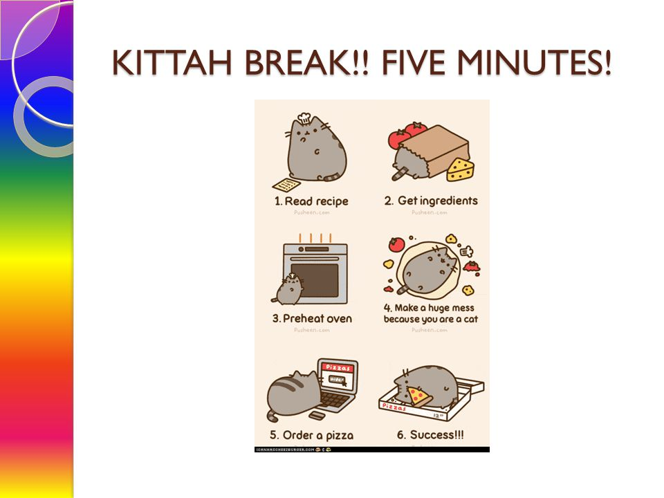 KITTAH BREAK!! FIVE MINUTES!