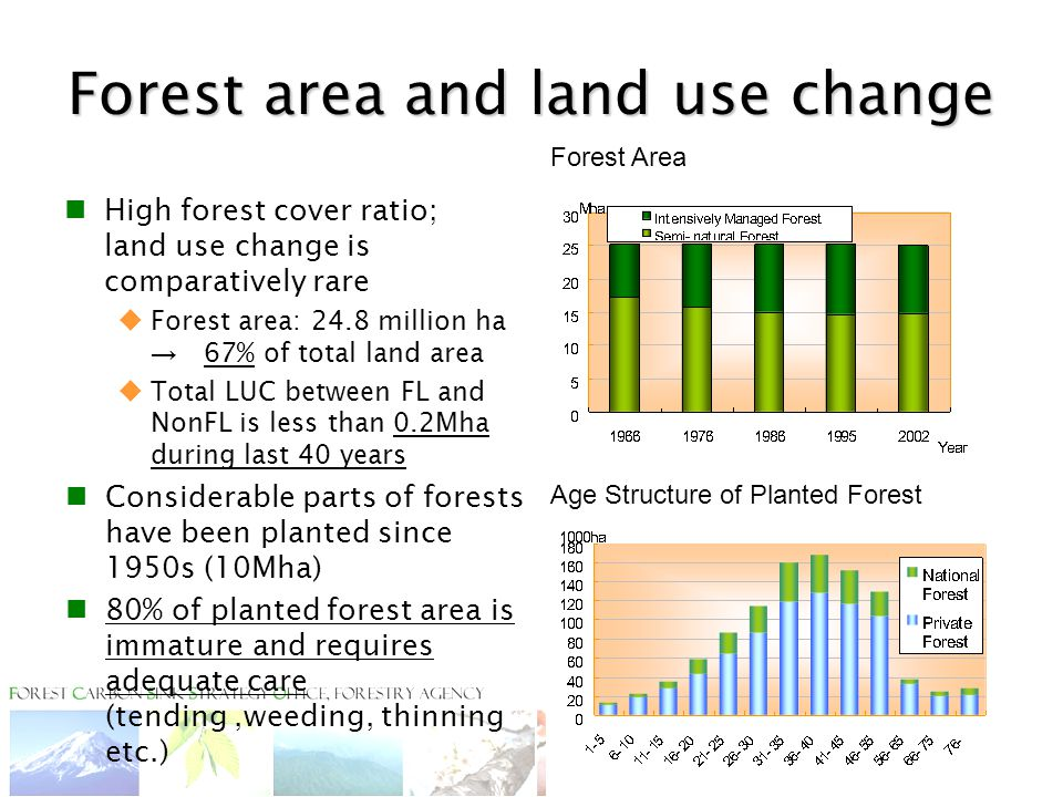 Forest area and land use change High forest cover ratio; land use change is comparatively rare  Forest area: 24.8 million ha → 67% of total land area