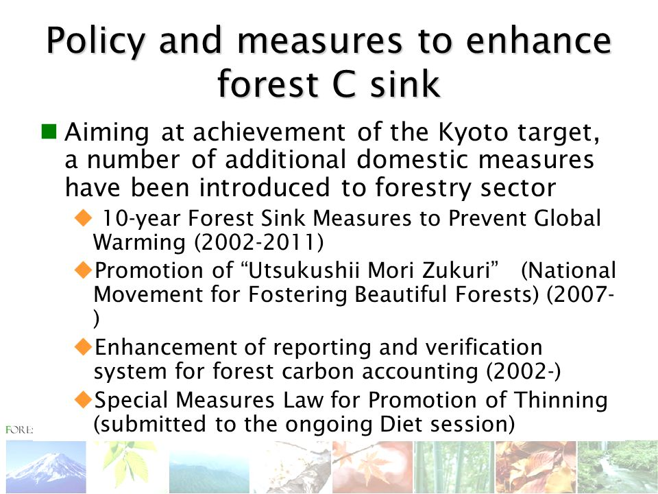 Policy and measures to enhance forest C sink Aiming at achievement of the Kyoto target, a number of additional domestic measures have been introduced