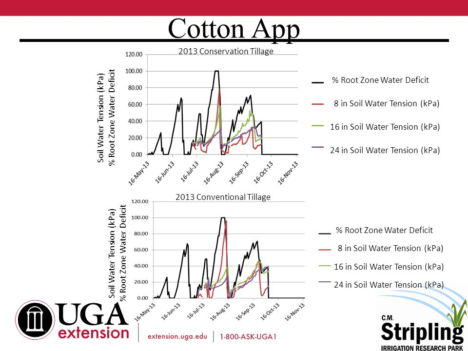 Cotton App % Root Zone Water Deficit 8 in Soil Water Tension (kPa) 16 in Soil Water Tension (kPa) 24 in Soil Water Tension (kPa) % Root Zone Water Deficit 8 in Soil Water Tension (kPa) 16 in Soil Water Tension (kPa) 24 in Soil Water Tension (kPa) Soil Water Tension (kPa) % Root Zone Water Deficit Soil Water Tension (kPa) % Root Zone Water Deficit 2013 Conservation Tillage 2013 Conventional Tillage