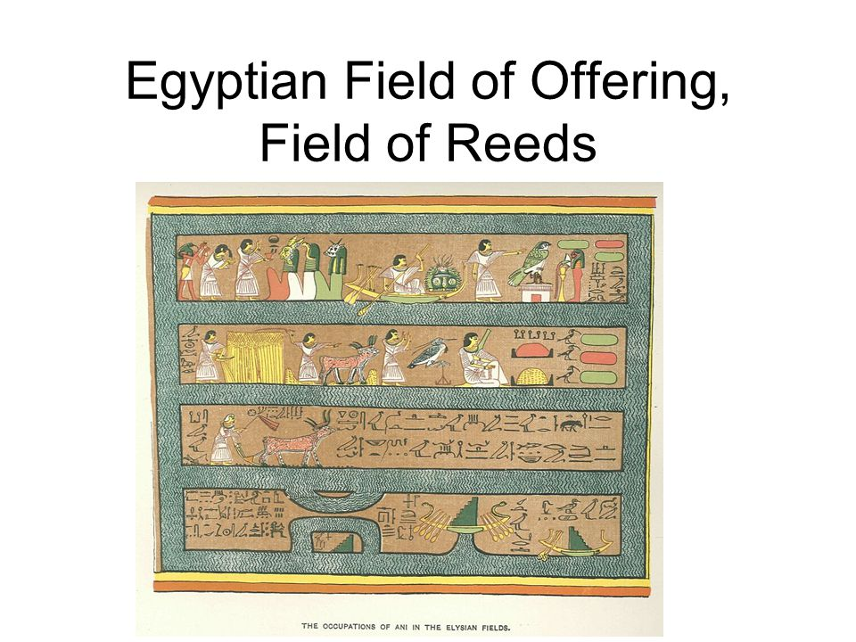 Egyptian Field of Offering, Field of Reeds