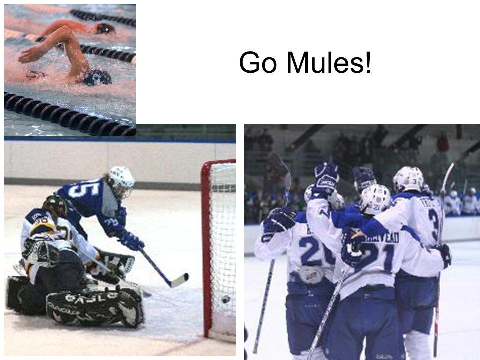 Go Mules!