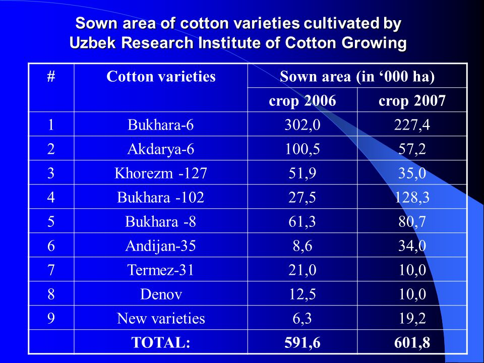 Sown area of cotton varieties cultivated by Uzbek Research Institute of Cotton Growing #Cotton varietiesSown area (in '000 ha) crop 2006crop 2007 1Bukhara-6302,0227,4 2Akdarya-6100,557,2 3Khorezm -12751,935,0 4Bukhara -10227,5128,3 5Bukhara -861,380,7 6Andijan-358,634,0 7Termez-3121,010,0 8Denov12,510,0 9New varieties6,319,2 TOTAL:591,6601,8