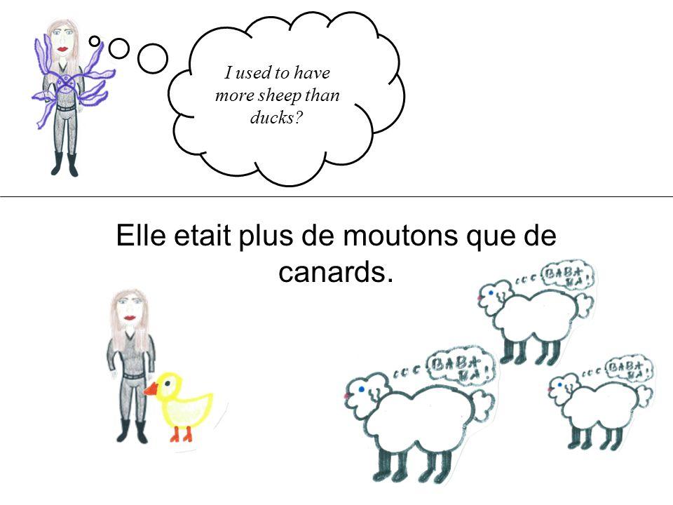 I used to have more sheep than ducks Elle etait plus de moutons que de canards.
