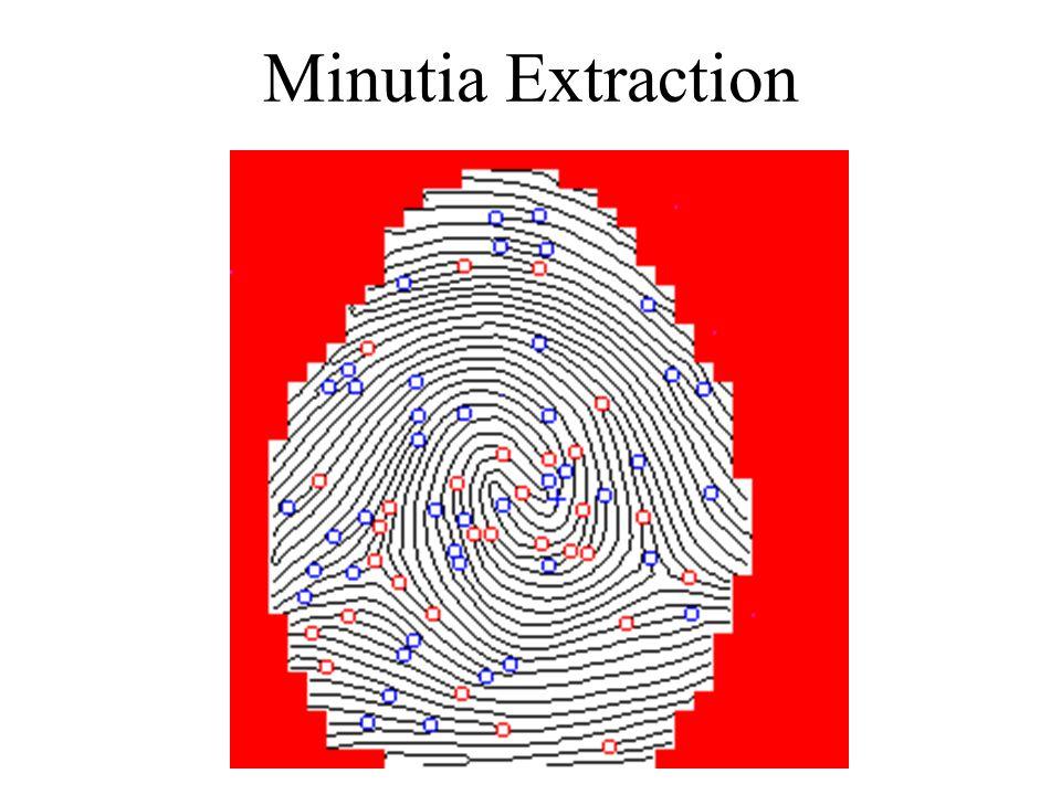 Minutia Extraction