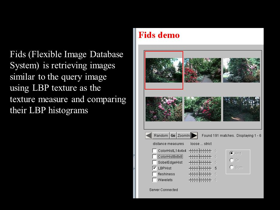 47 Fids (Flexible Image Database System) is retrieving images similar to the query image using LBP texture as the texture measure and comparing their LBP histograms