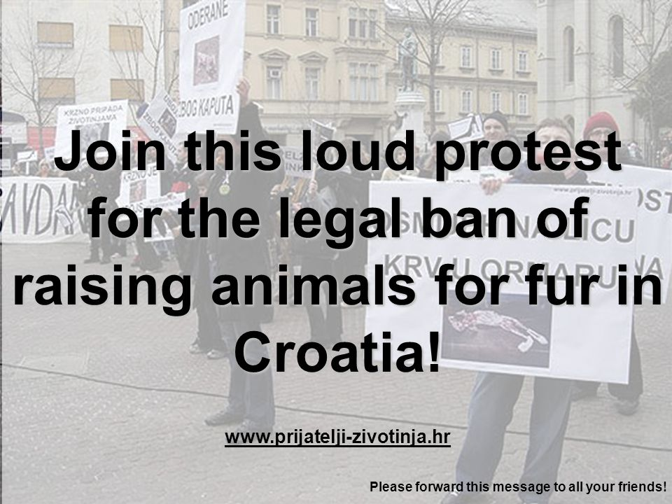 Therefore Animal Friends Croatia invite you to join this LOUD ANTI-FUR PROTEST Saturday, February 4, 2006, at 11 AM The loud protest against raising of animals for fur in Croatia will start in front of the Croatian National Theatre and will go along the following route: Croatian National Theatre, Frankopanska Street, Ilica, Ban Jelacic Square, Ilica, Margaretska Street, Petar Preradovic Square, Preradoviceva Street, Masarykova Street, Croatian National Theatre.