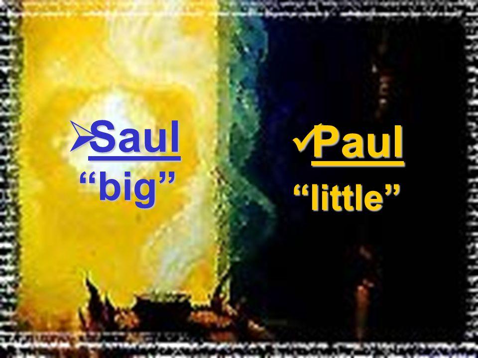 Paul Paul little  Saul big