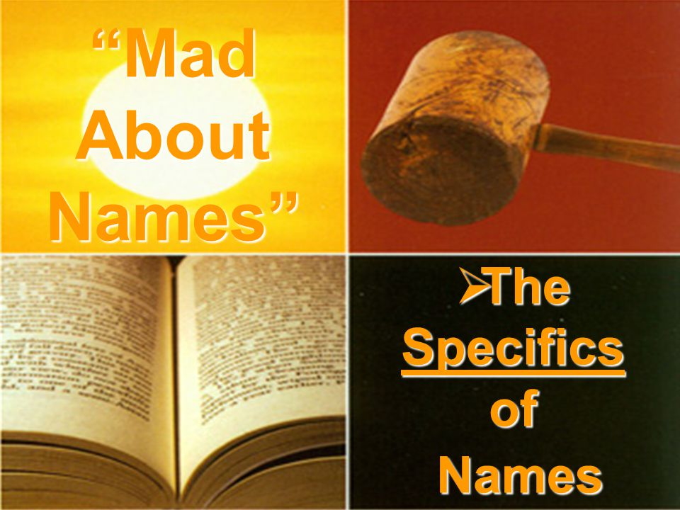  The Specifics of Names Mad About Names