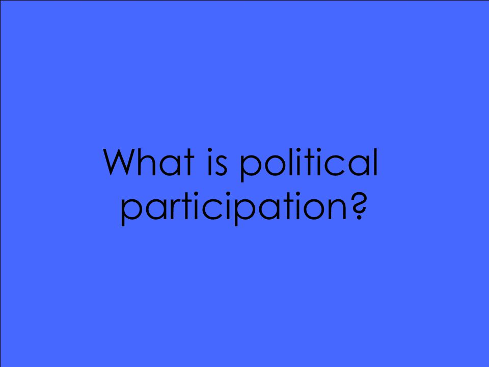 What is political participation