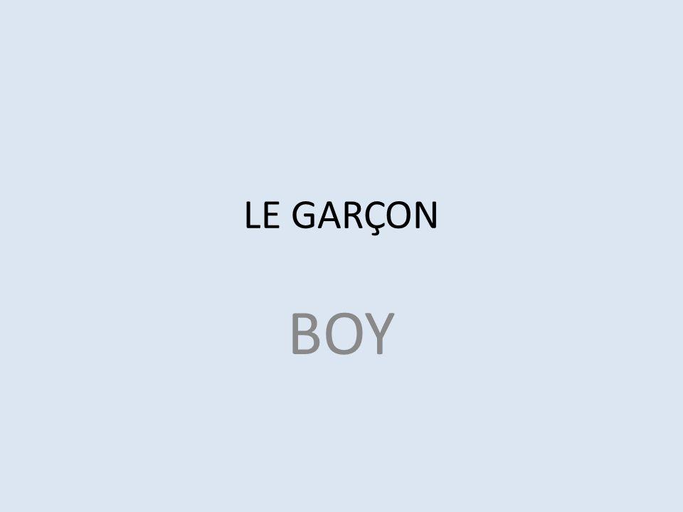 LE GARÇON BOY