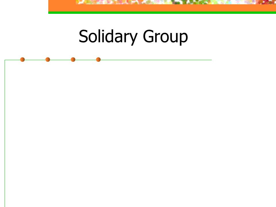 Solidary Group
