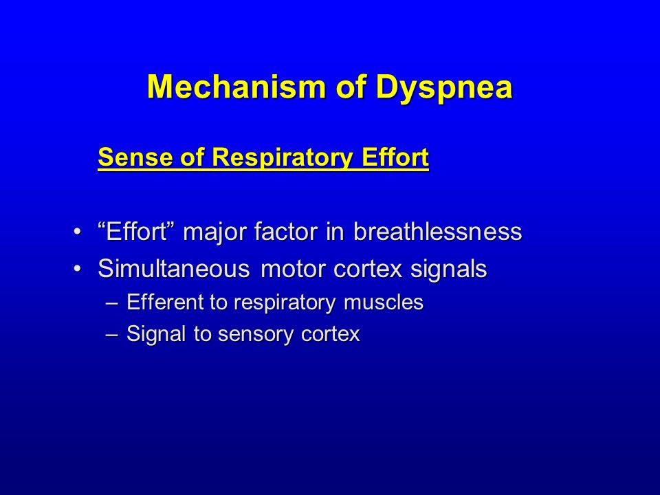 Mechanism of Dyspnea Sense of Respiratory Effort Effort major factor in breathlessness Effort major factor in breathlessness Simultaneous motor cortex signalsSimultaneous motor cortex signals –Efferent to respiratory muscles –Signal to sensory cortex