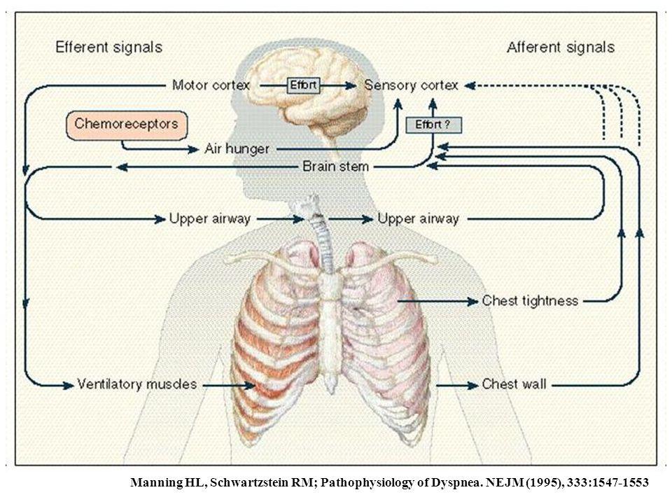 Manning HL, Schwartzstein RM; Pathophysiology of Dyspnea. NEJM (1995), 333:1547-1553