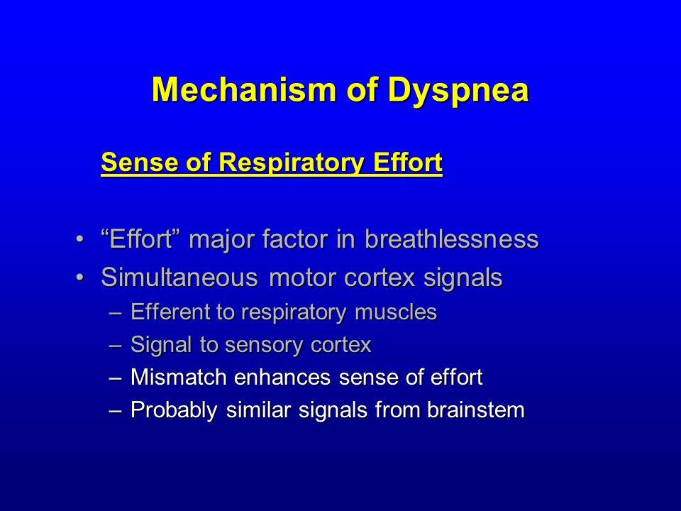 Mechanism of Dyspnea Sense of Respiratory Effort Effort major factor in breathlessness Effort major factor in breathlessness Simultaneous motor cortex signalsSimultaneous motor cortex signals –Efferent to respiratory muscles –Signal to sensory cortex –Mismatch enhances sense of effort –Probably similar signals from brainstem
