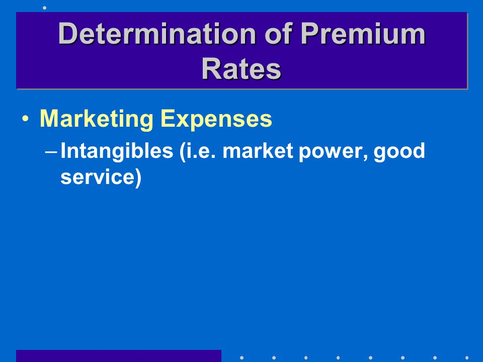 Determination of Premium Rates Marketing Expenses –Intangibles (i.e. market power, good service)