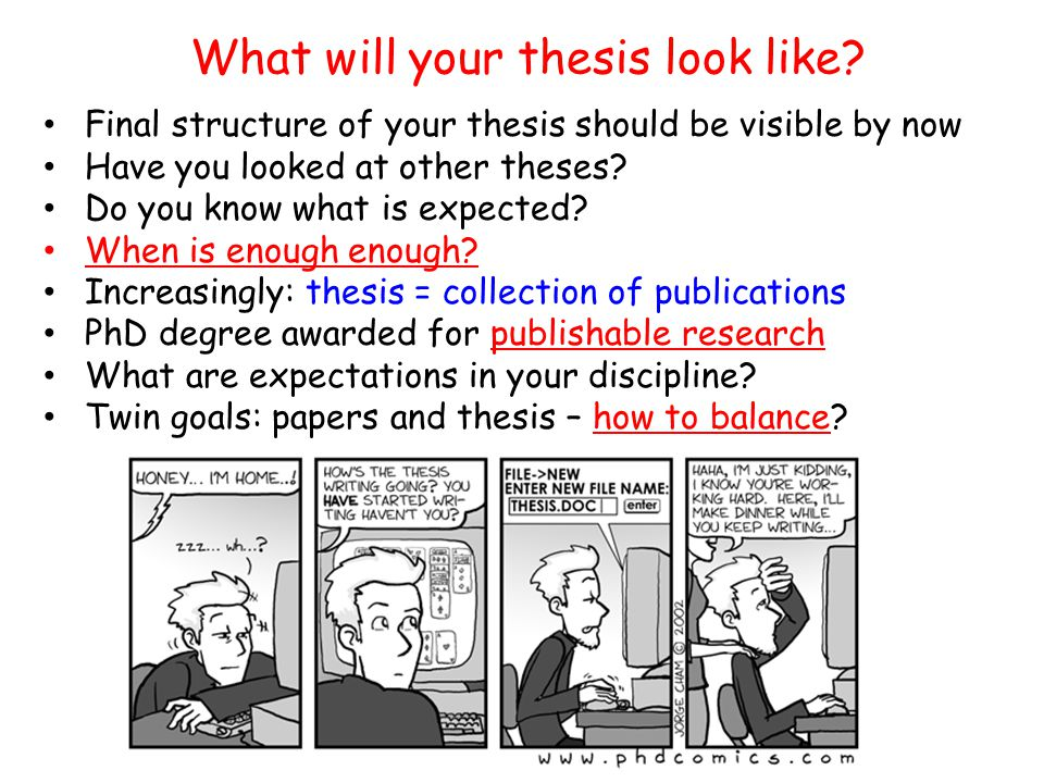 Final structure of your thesis should be visible by now Have you looked at other theses? Do you know what is expected? When is enough enough? Increasi