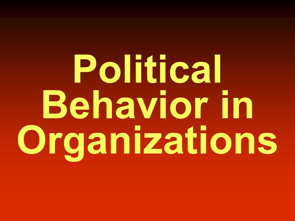 Political Behavior in Organizations