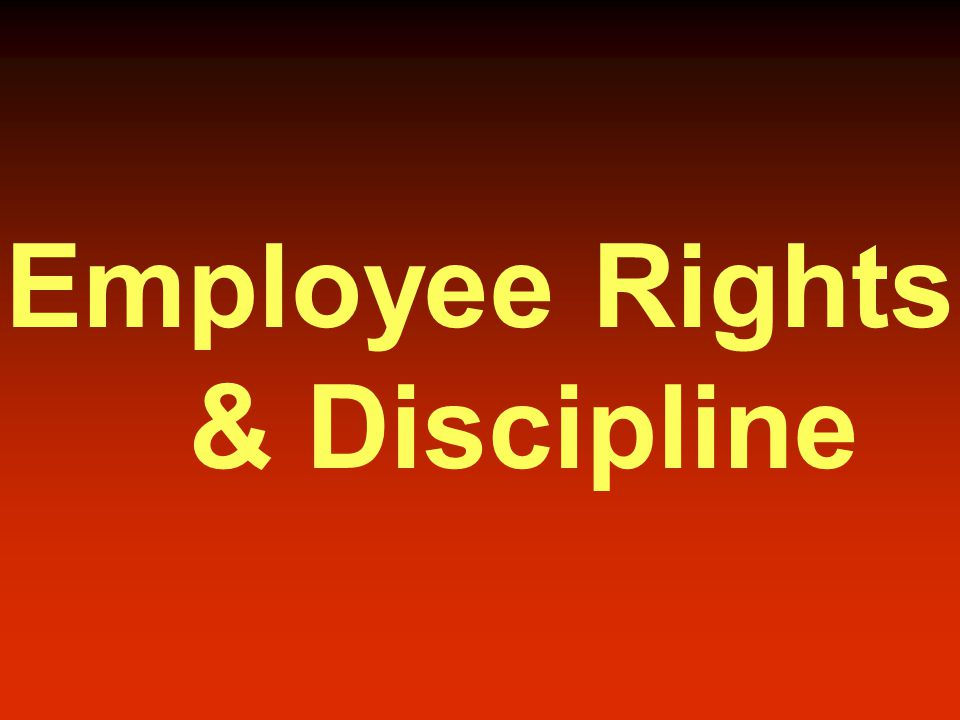 Employee Rights & Discipline