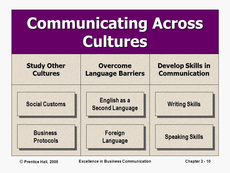 © Prentice Hall, 2005 Excellence in Business CommunicationChapter 3 - 10 Communicating Across Cultures Study Other CulturesOvercome Language Barriers