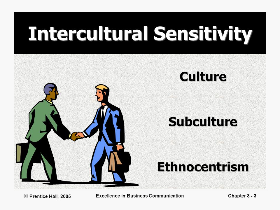 © Prentice Hall, 2005 Excellence in Business CommunicationChapter 3 - 3 Intercultural Sensitivity Culture Subculture Ethnocentrism