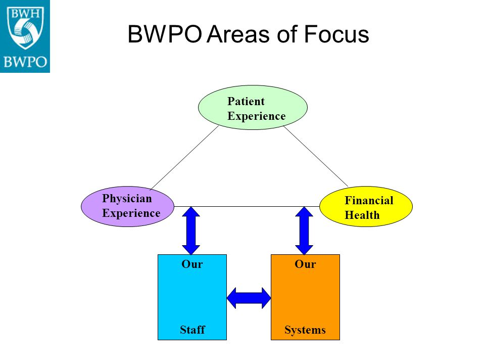 Patient Experience Physician Experience Financial Health Our Staff Our Systems BWPO Areas of Focus