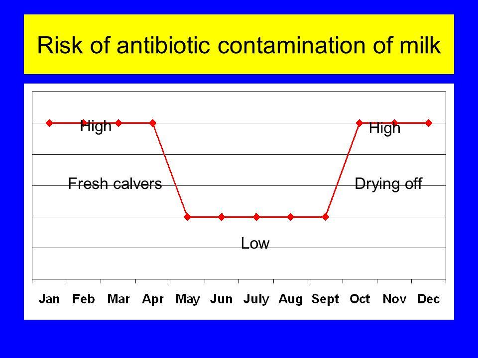 Risk of antibiotic contamination of milk High Low Fresh calversDrying off