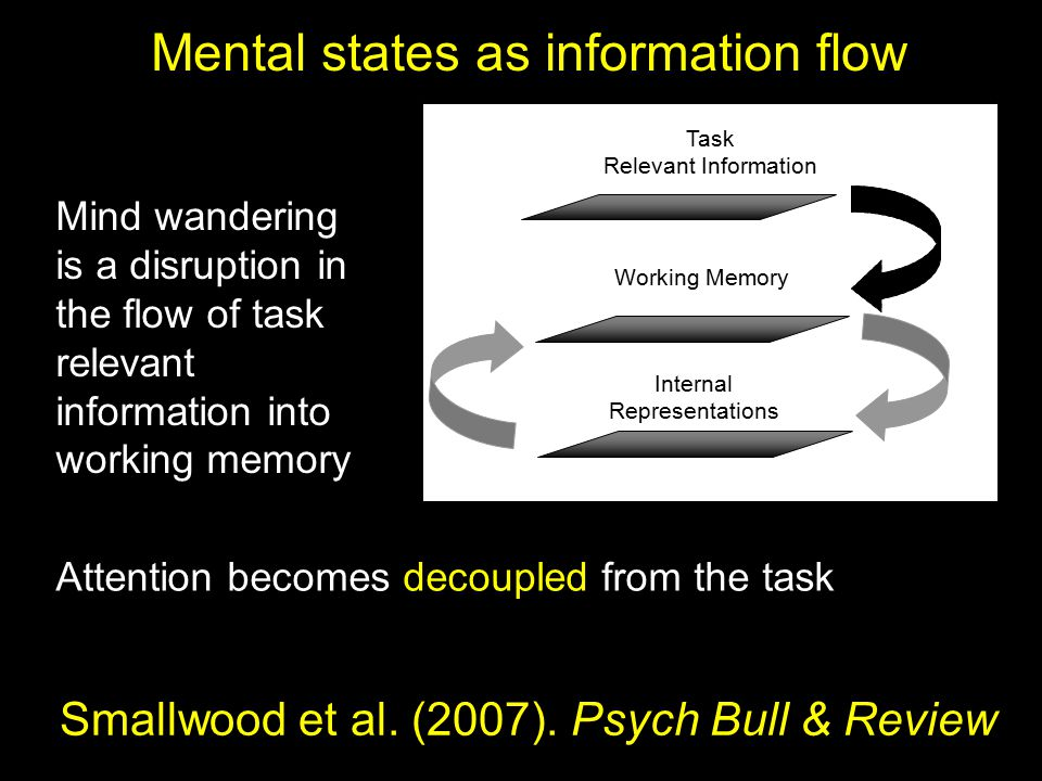 Internal Representations Task Relevant Information Working Memory Mind wandering is a disruption in the flow of task relevant information into working